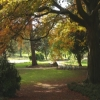 Roberts Park Saltaire
